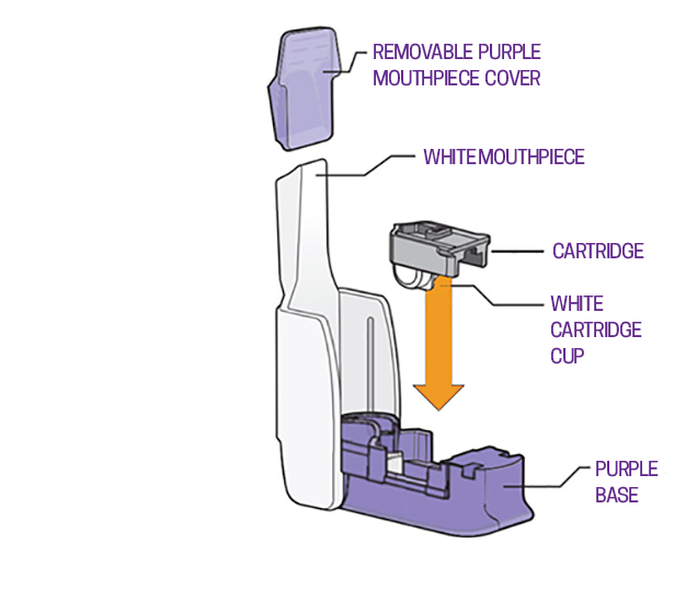 Hcp Inhaler Ifu With Labels