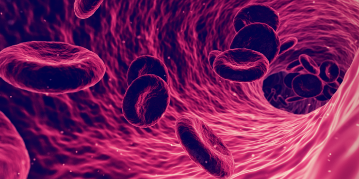 https://afrezza.com/uploads/blog/Red_Blood_Cells_A1C-1.png