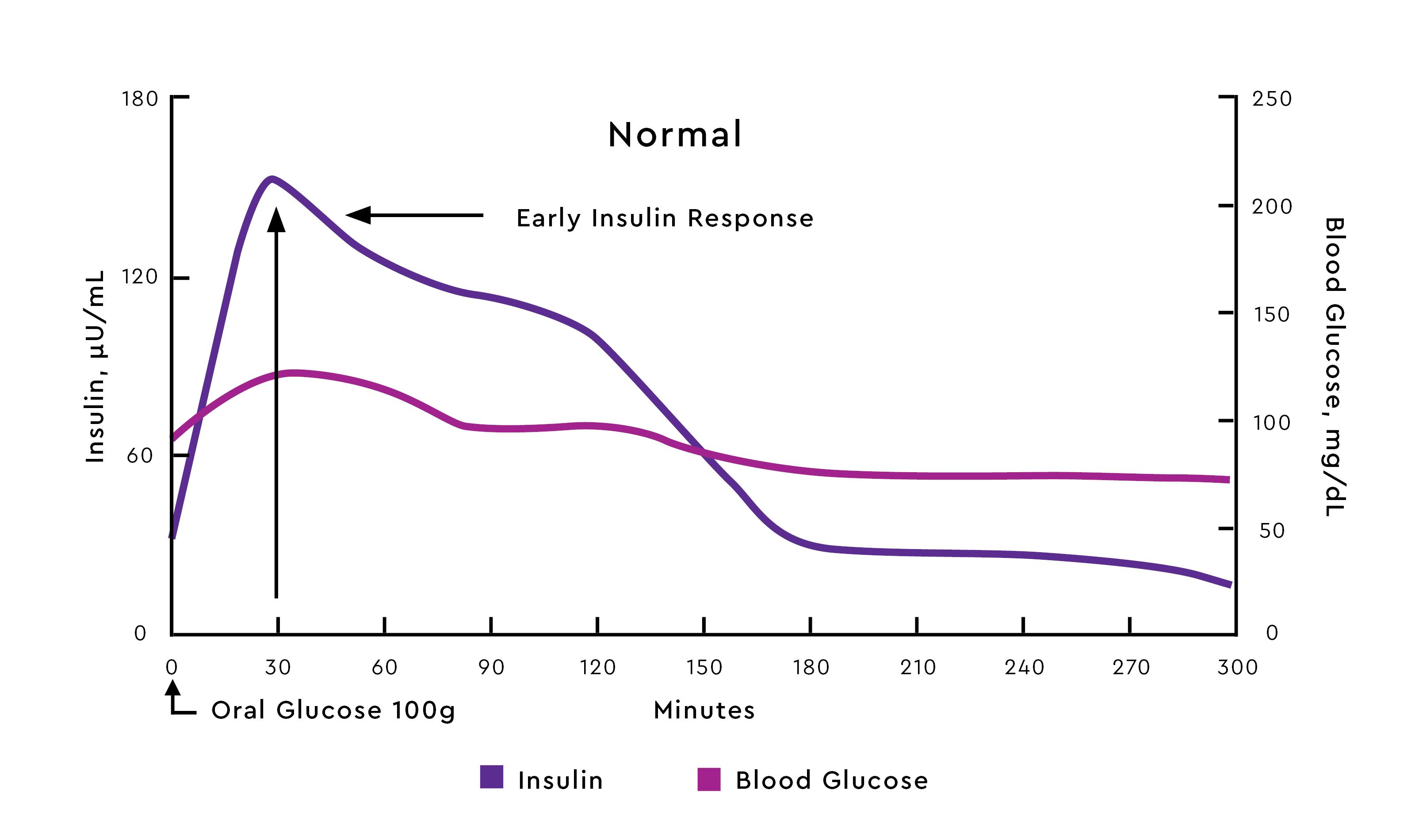 Physiologic Postprandial Insulin Profile 8
